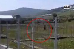 IMAGINI ȘOCANTE la Dej! Persoane de etnie romă, act de cruzime împotriva a doi câini – VIDEO