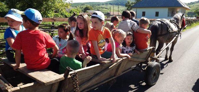 Experiențe inedite pentru un grup de elevi din Dej, la Centrul Turistic Cășeiu – FOTO