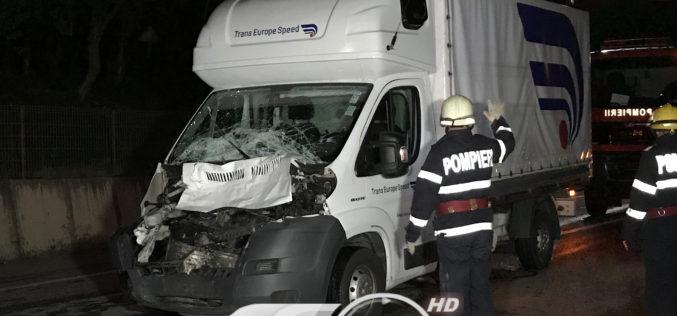 ACCIDENT pe centură la Gherla – Bivol zdrobit de o autoutilitară – FOTO/VIDEO